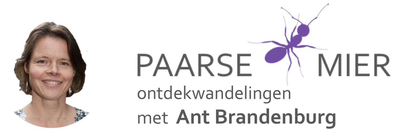 Ontdekwandelingen met Ant Brandenburg van de Paarse Mier